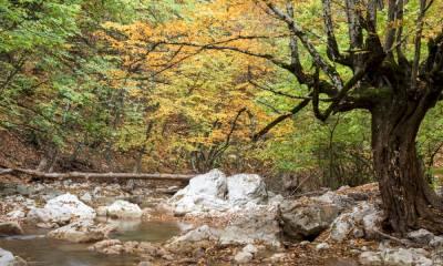 Большой каньон в Крыму отзывы