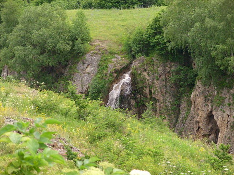 Природа в окрестностях Медовых водопадов