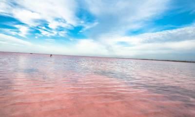 Розовое озеро Крым как добраться самостоятельно