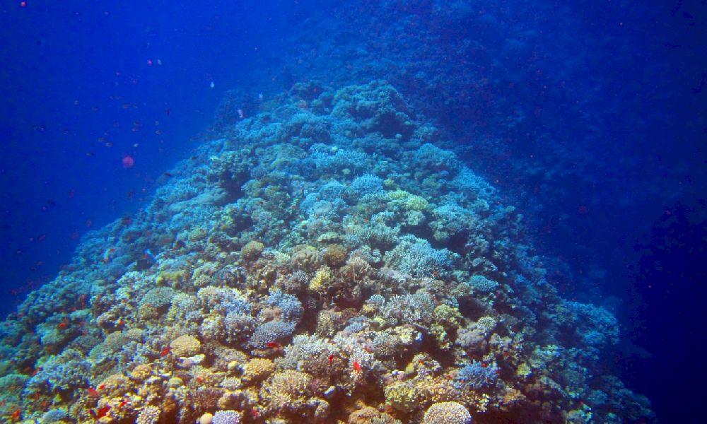 Иордания Красное море