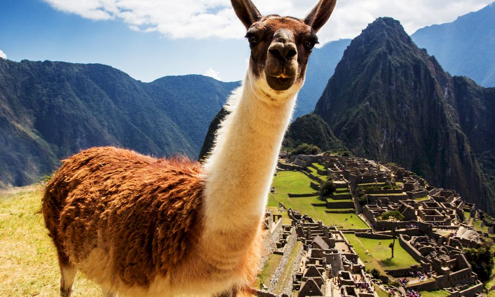 Мачу Пикчу панорама