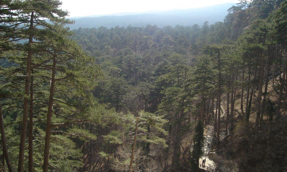 Вид от водопада Учан-Су