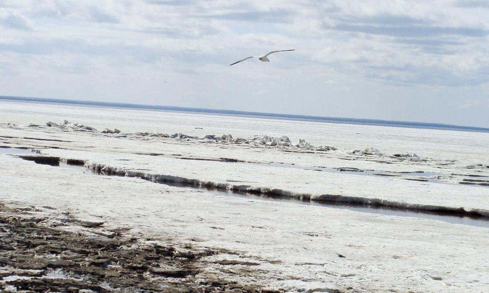 Белое море Россия