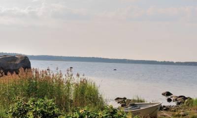 Финский залив как доехать