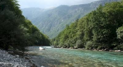 каньон реки Тары Черногория