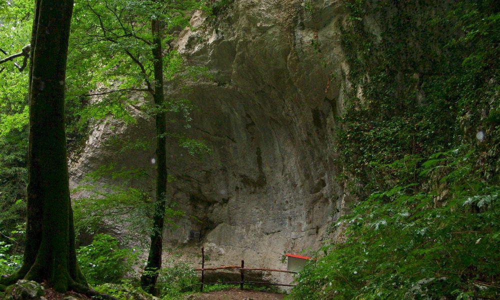 Воронцовские пещеры экскурсия